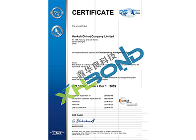 汉高股份-ISO 14001-English Version